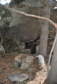 Parte trasera de la Cabaña del ermitaño
