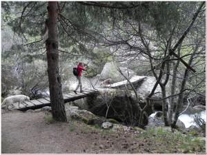 Cruzar el puente