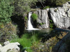 Poza del arroyo de los Hoyos de la Sierra