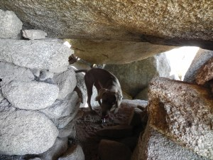 Salida trasera de la cueva