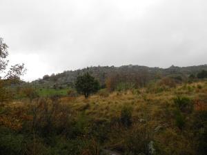 Cerro de la Berrocosa